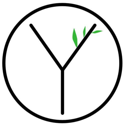 Logo Projekt Ylvie
